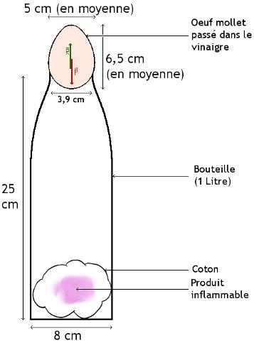 comment mettre 1 œuf dans une bouteille